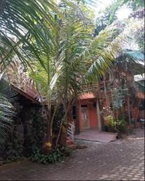 2 bedroom Apartment for rent kisugu Kampala Central
