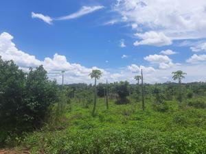 Land for sale Kayunga Kangulumira Kayunga Central