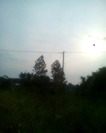Land for sale Luweero Central