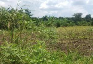 Land for sale Mubende Central
