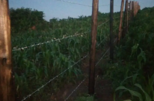 Land for sale Mubende Central