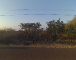 Stands & Residential land Land for sale Victoria Falls Matabeleland North