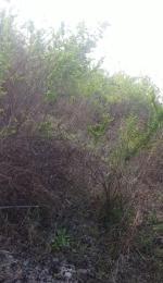 Land for sale Kinondo Kwale County, Diani, Mombasa Diani Mombasa