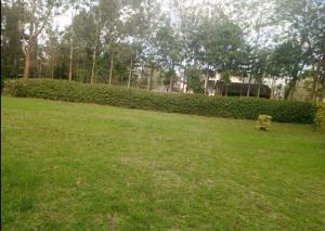 4 bedroom Houses for rent Karen Plains Rd Karen Langata Nairobi