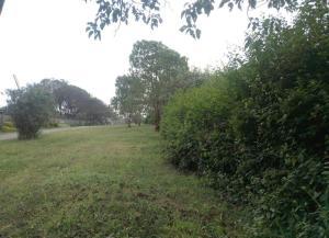 Farm for sale United Nations Ave Kitisuru, Gigiri, Nairobi Gigiri Nairobi