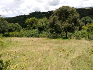 Agricultural Land for sale Laikipia West Laikipia