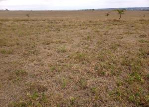 Land for sale Kajiado, Kitengela Kitengela Kajiado