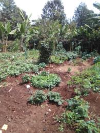 Agricultural Land for sale Laikipa East Laikipia
