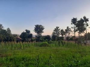 Land for sale Walukuba-Masese Rd, Jinja, Uganda Bugembe Jinja Eastern