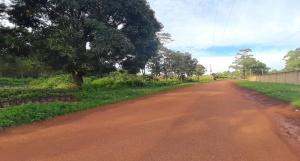 Land for sale Bujagali Road Jinja Eastern