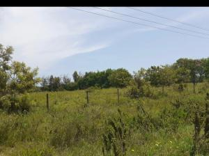 Land for sale Vipingo  Kilifi North Kilifi