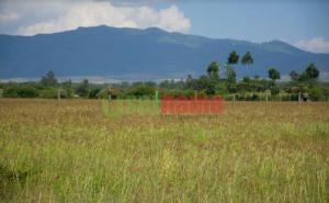 Land for sale Elementaita Nakuru County, Nakuru Town, Nakuru Nakuru Town Nakuru