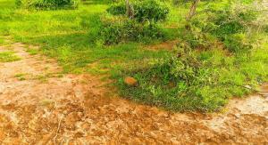 Land for sale Matangi Rd Ruiru, Ruiru, Ruiru Ruiru Ruiru