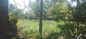 Land for sale Nairobi, Mirema Mirema Nairobi