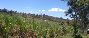 Land for sale Ke Migori County, Migori, Migori Migori Migori