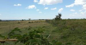 Farm for sale Narok, Narok Narok Narok