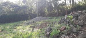 Land for sale Nairobi, Kerarapon Kerarapon Nairobi