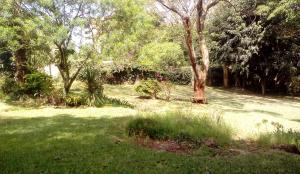 Land for sale Nairobi, Ngong Rd Ngong Rd Nairobi