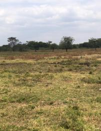 Land for sale Thika Embu Road, Kenol, Muranga Kenol Muranga