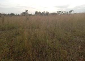 Land for sale Ruiru, Ruiru Ruiru Ruiru