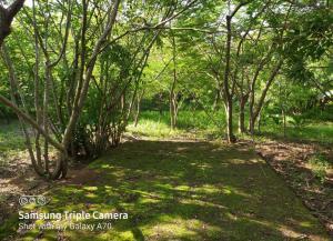 Land for sale Mombasa, Mombasa Island Mombasa Island Mombasa