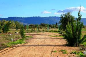 Land for sale Koma - Mitaboni Rd, Kangundo Road, Kangundo Kangundo Road Kangundo