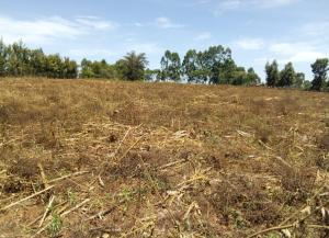 Land for sale Kitale, Kitale Town Kitale Town Kitale
