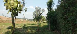 Land for sale Redhill, Redhill, Nairobi Redhill Nairobi