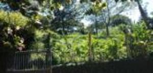 Residential Land for sale Nyari Westlands Nairobi