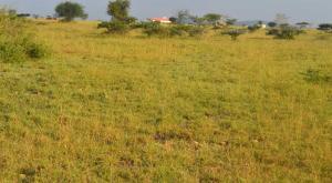 Land for sale Thika, Thika Thika Thika