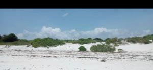 Land for sale - Bofa Kilifi