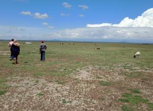 Land for sale Nanyuki Laikipia County, Nanyuki, Nanyuki Nanyuki Nanyuki