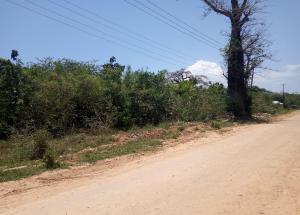 Land for sale Diani Beach Road Kwale County, Diani, Mombasa Diani Mombasa