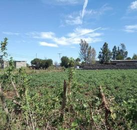 Land for sale Nakuru - Nairobi Rd Gilgil, Naivasha, Naivasha Naivasha Naivasha