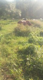 Land for sale Mbarara Western