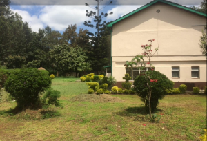Commercial Properties for rent ... Kilimani Nairobi