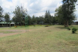 Commercial Properties for sale Miti Mingi Nakuru County Naivasha East Nakuru