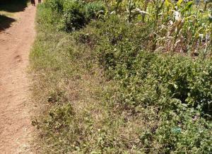 Land for sale Kabiria Kawangware, Kawangware, Nairobi Kawangware Nairobi
