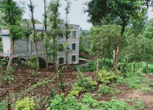 Land for sale Red Hill Road, Ruaka, Nairobi Ruaka Nairobi