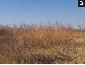 Farm & Agricultural land Land for sale kadoma, Kadoma Mashonaland West