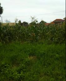 Land for sale Kasanda Central