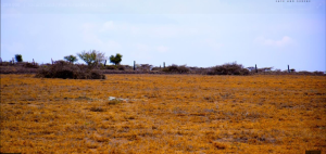 Land for sale Konza Kajiado County Kajiado Kajiado
