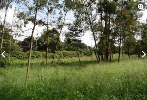 Land for sale King'ong'o, Nyeri Nyeri Town Nyeri
