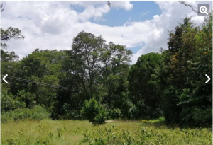 Land for sale Penguin House Hamptons Rd Nanyuki Laikipa East Laikipia