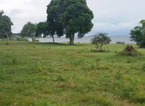 Land for sale entebbe Kampala Central