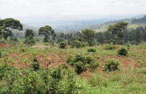 Land for sale kiwawu Kampala Central