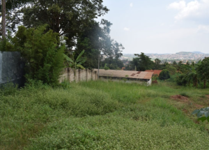 Land for sale mbuya Kampala Central