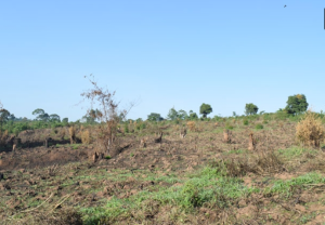 Land for sale nswanjere Kampala Central