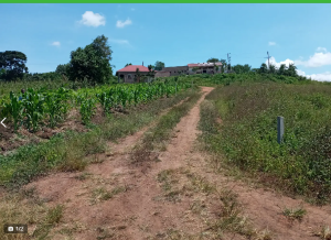 Land for sale - Wakiso Central