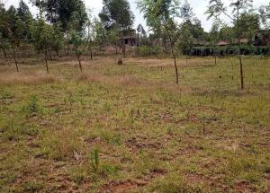 Land for sale Kikuyu Central, Kikuyu, Kikuyu Kikuyu Kikuyu